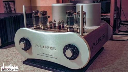 Auris-Audio-Fortissimo-DSCN1783