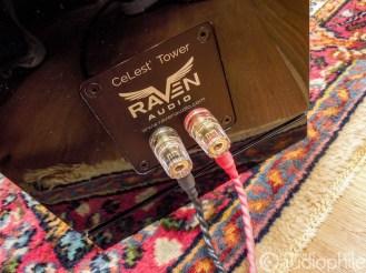 Raven-CeLest-DSCN2137