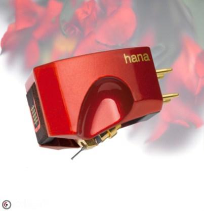 Hana Umami Red Floral BG