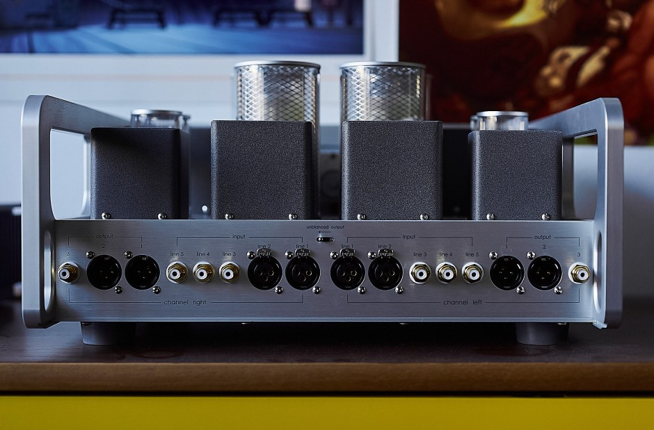 Back panel of the L-8000 DHT preamplifier.