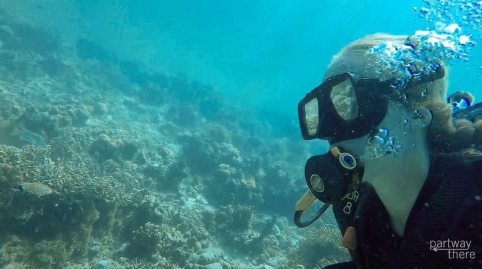 scuba diving sangat gunboat wreck