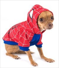 Pet costumes - Party supplies China