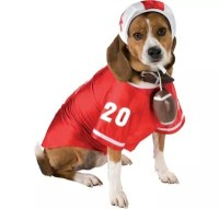 Football Player Dog Costume - Party City