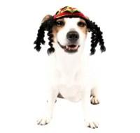 Rasta Dog Costume - Classic Dog Costumes - Dog Costumes ...
