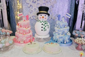 Iris and Dean's Winter Wonderland Themed party – 1st birthday
