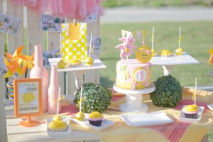 Sabby's You are My Sunshine Themed Party – 1st Birthday