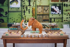 Tony's Museum Themed Party – 7th Birthday
