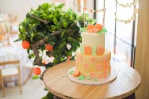 Enzo's Orange Farm Themed Party – 1st Birthday