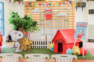 Eli's The Peanuts Themed Party – 1st Birthday