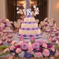 Glamourous Purple Theme Debut