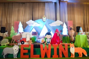 Elwin's Exciting Camping Theme Party – 1st Birthday