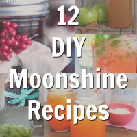 12 DIY Moonshine Recipes