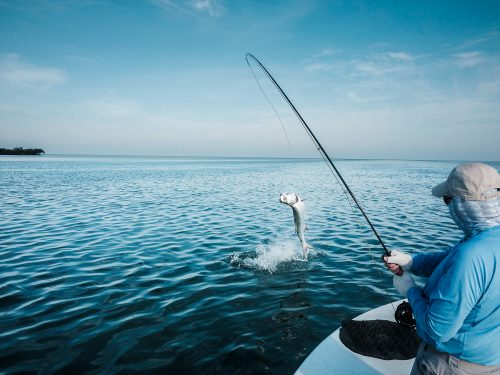 CAPT MIKE WILBUR'S CHASER CHARTERS