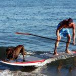 key west paddle boarding