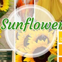 Sunflower Wedding ❤ Sunflower Baby & Birthdays