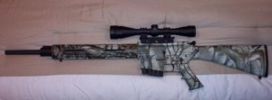 Bush308, gun legislation