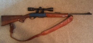 woodmaster308, gun legislation