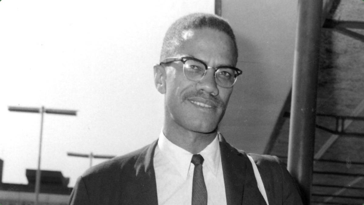 Malcolm X, police brutality