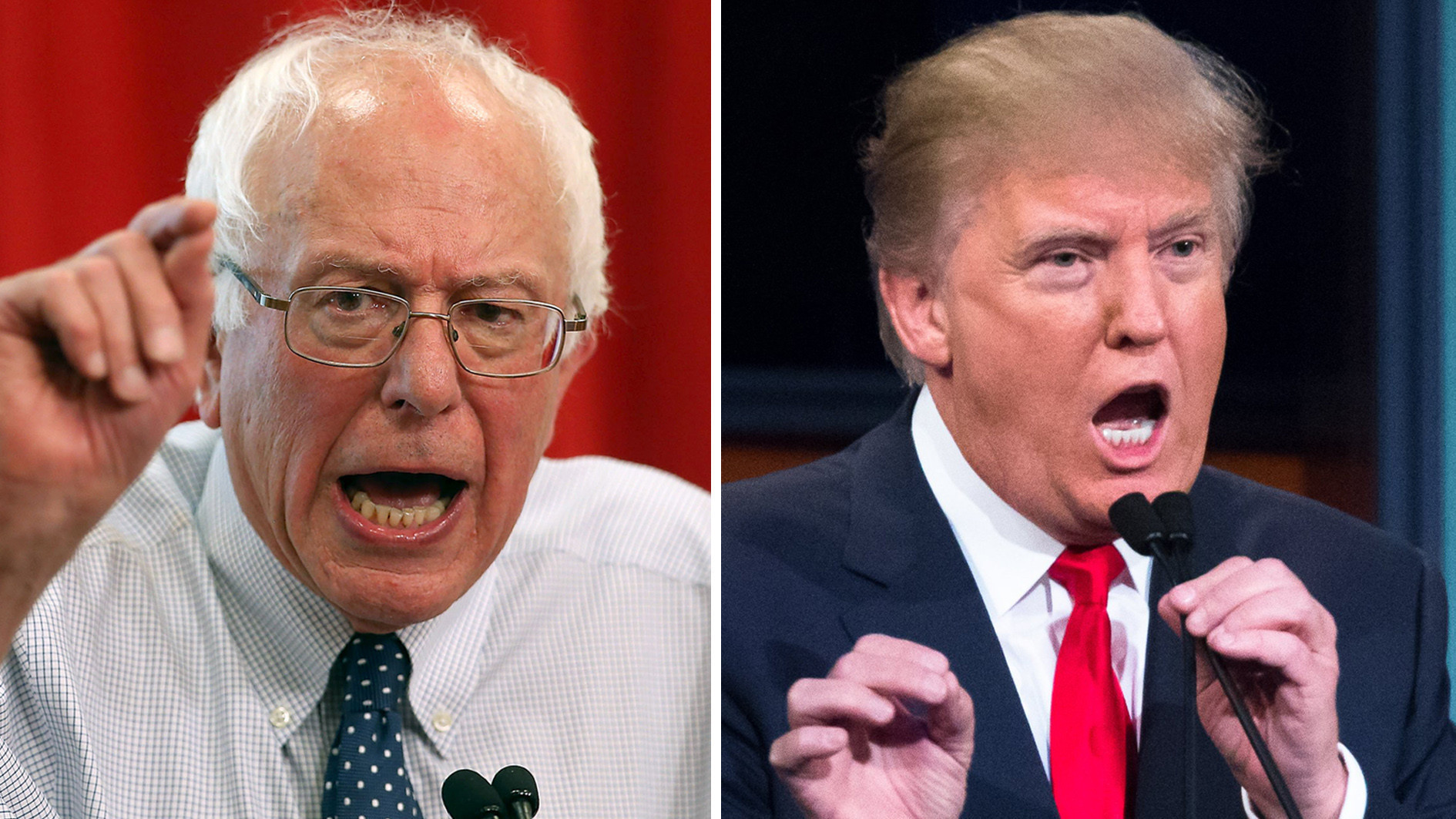 Political Establishment, Bernie Sanders, Donald Trump