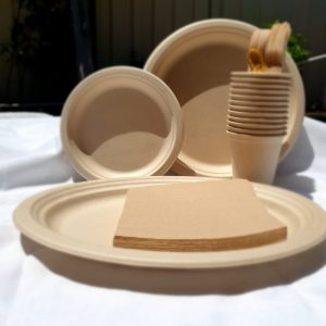 eco party plate set