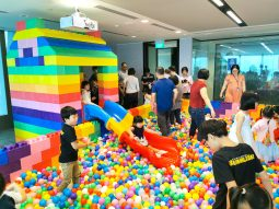 Gaint Playground for hire