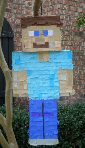 Player Steve Pinata