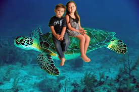 swimming trutle with kids