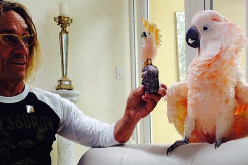 Iggy Pop con su mascota
