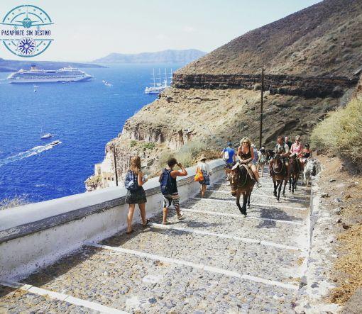 Burros de Santorini y acantilado