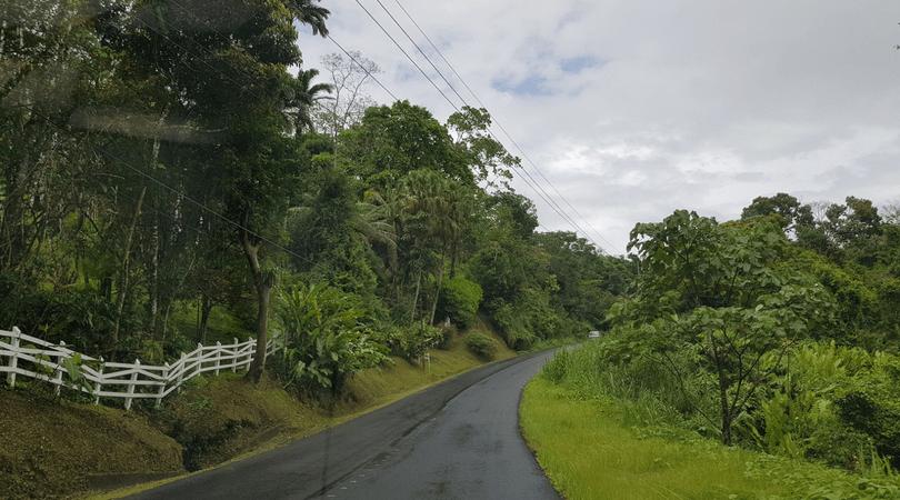 El camino a La Fortuna