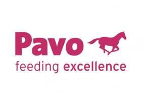 Pavo horses logo