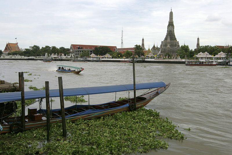 Mae Nam Chao Phraya upė ir nelemtieji vandens jacintai, kažkada atvežti iš Indonezijos.