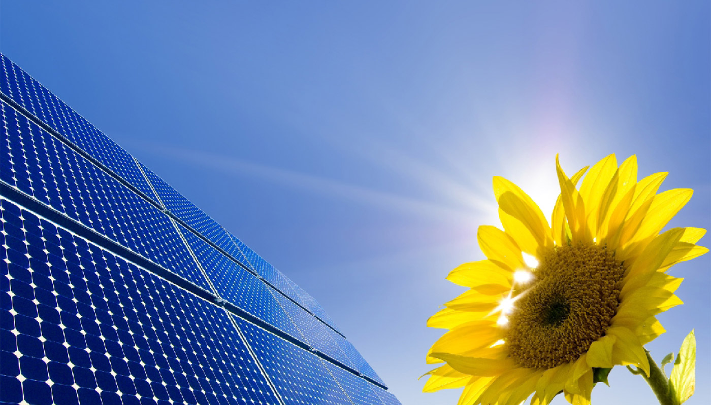 Solar Power Marty Hale