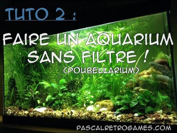aquarium 1an sans filtre