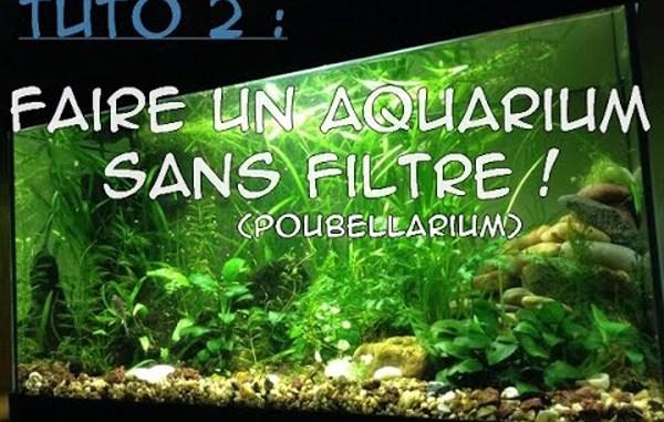 tuto 2 aquarium sans filtre poubellarium d 39 int rieur aquariophilie sans filtre et. Black Bedroom Furniture Sets. Home Design Ideas