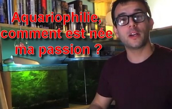 explication sur la naissance de ma passion pour aquariophilie