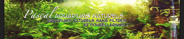 cropped-pascal-aquarium-naturels.jpg
