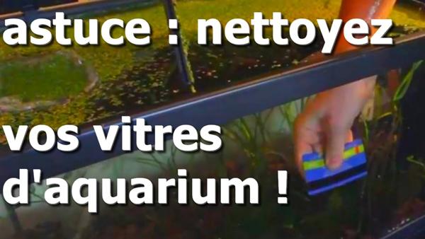 astuces nettoyage des vitres d'aquarium