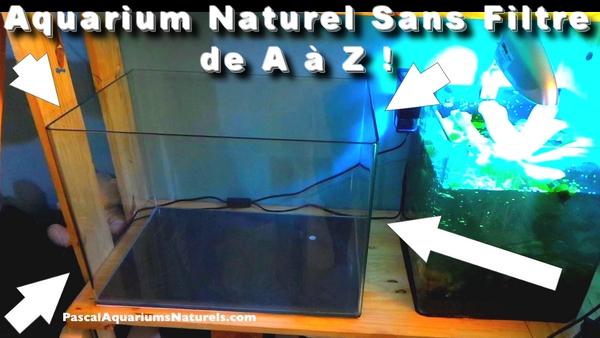 tuto nano aquarium naturel sans filtre !
