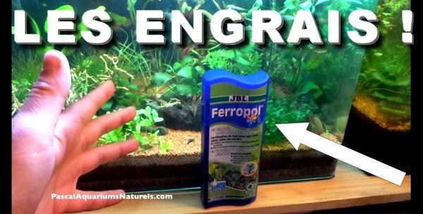 ferropol jbl un super engrais d' aquarium