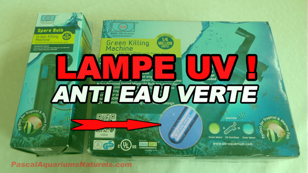 lampe uv anti algue verte !