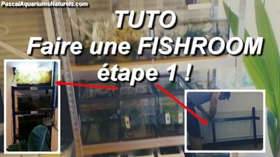 tuto fishroom 1 !