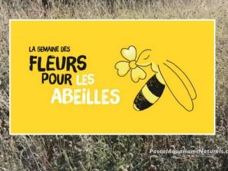 semaine fleur abeilles