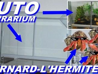 tuto terrarium à PAGOU !