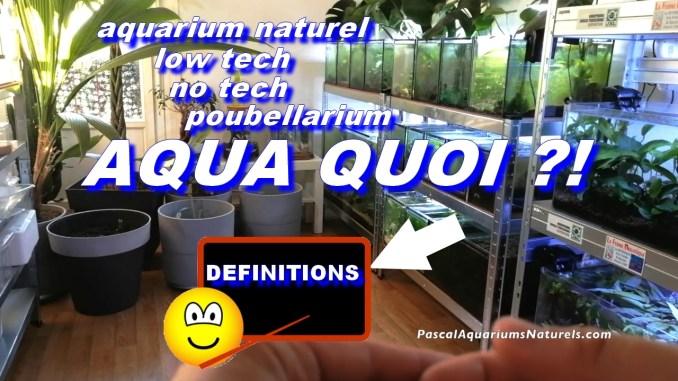 définition aquarium naturels sans filtre