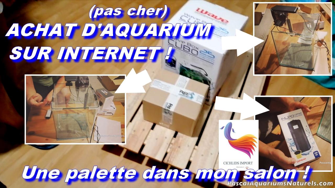 cichlids-import : meilleurs shop aquariophile d'internet !