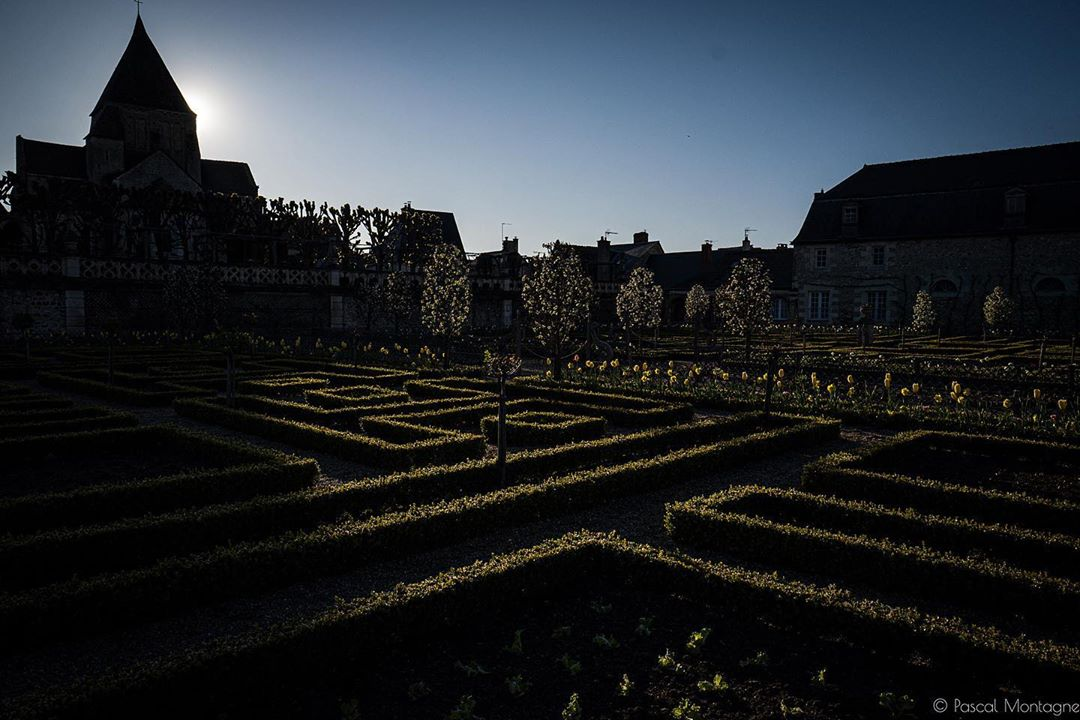 Confinement – day 19 – French garden of @chateauvillandry #villandry #sunset #confinement #confinamento #gardens #france #french #shadows