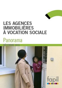 Infographiste Rouen Pascal Ridel Brochure AIVS 2015 charte graphique la Fapil