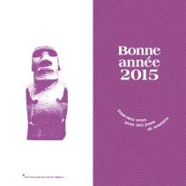 Infographiste Rouen Pascal Ridel Affiche Carte de voeux 2015
