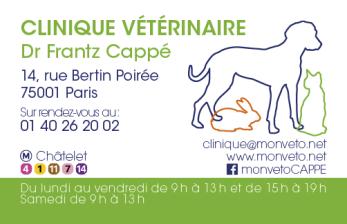Infographiste Rouen Pascal Ridel Création carte de visite design vétérinaire Frantz Cappé